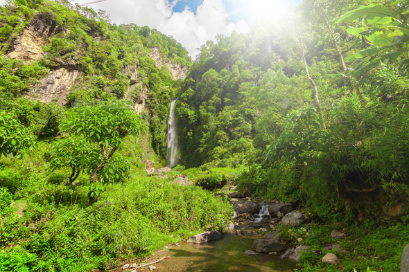 Waterfall in deep forest near. - Stock Photo - Images