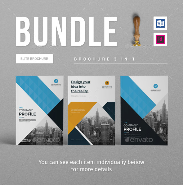 Company Brochure Bundle - Catalogs Brochures