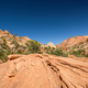 Landscape in Zion National Park - PhotoDune Item for Sale