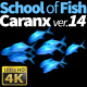School of Fish Caranx-14 - VideoHive Item for Sale