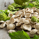Raw homemade Orecchiette pasta and turnip greens - PhotoDune Item for Sale