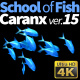 School of Fish Caranx-15 - VideoHive Item for Sale