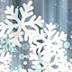 Silver Christmas Snowflakes - VideoHive Item for Sale