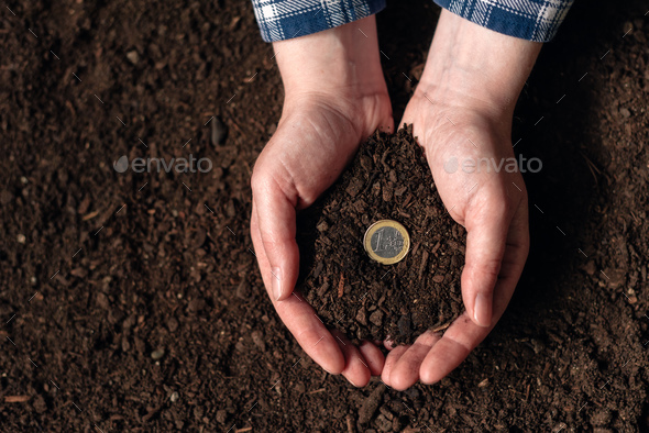Making money from agricultural activity and earning extra income - Stock Photo - Images