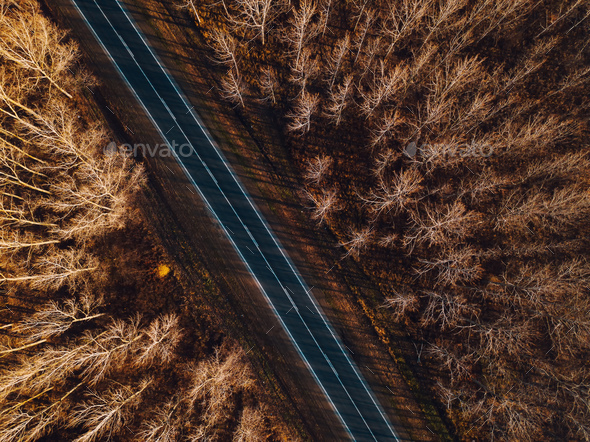 Aerial view of brand new road through autumn forest - Stock Photo - Images