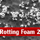 Rotting Foam 2 - GraphicRiver Item for Sale