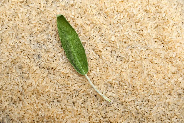 Fresh sage leaf on a background of rice cereals. - Stock Photo - Images