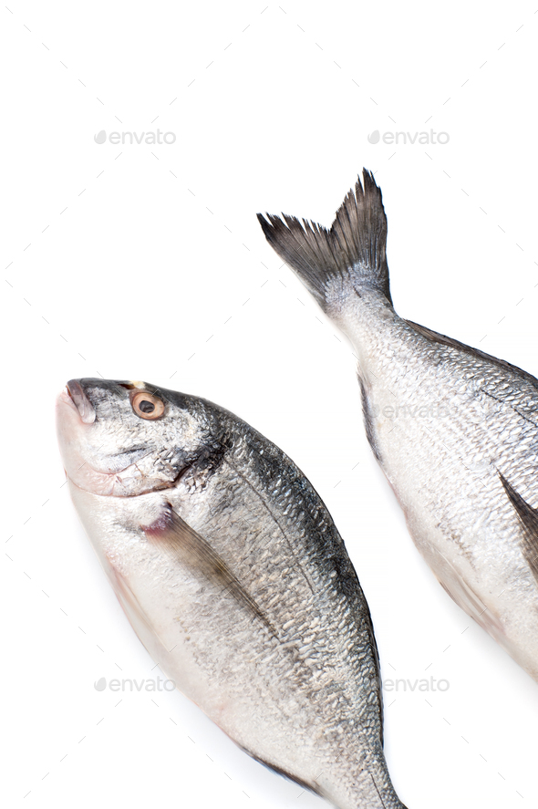 Two pieces of fresh Dorado fish on a white background. Isolated. - Stock Photo - Images