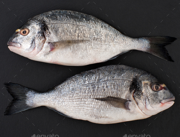 Two raw fish Dorado on a black stone background. - Stock Photo - Images