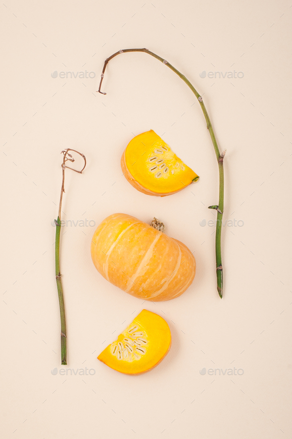 Fresh orange cut pumpkin and dried branches on a light beige pas - Stock Photo - Images