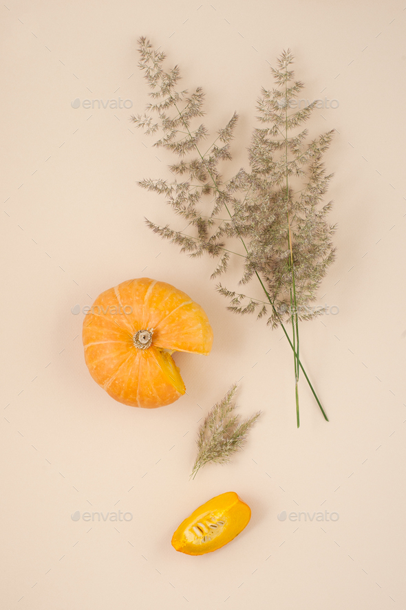 Fresh pumpkin close-up on an orange pastel background, decorated - Stock Photo - Images