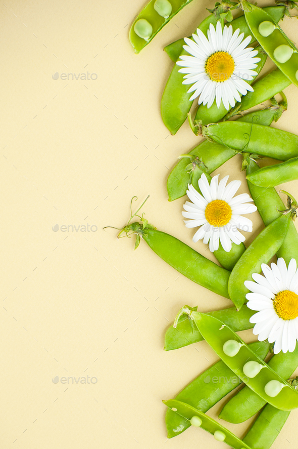 Young green peas and flowers Daisies on the right on a light yel - Stock Photo - Images