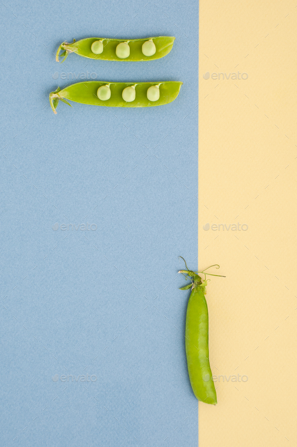 Fresh green peas on a textured yellow-blue background. - Stock Photo - Images