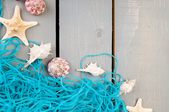 Seashells with blue net on grey wooden background. Flat lay. - Stock Photo - Images