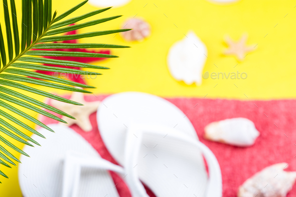 Tropical Background Palm Trees  - Stock Photo - Images