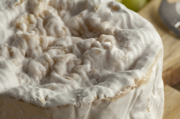 Small camembert cheese close up - Stock Photo - Images