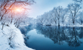 Winter forest on the river at sunset. Colorful landscape with sn - PhotoDune Item for Sale