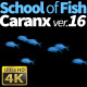 School of Fish Caranx-16 - VideoHive Item for Sale