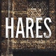 Hares - A Stylish WordPress Theme - ThemeForest Item for Sale