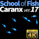 School of Fish Caranx-17 - VideoHive Item for Sale