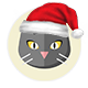 Is Christmas