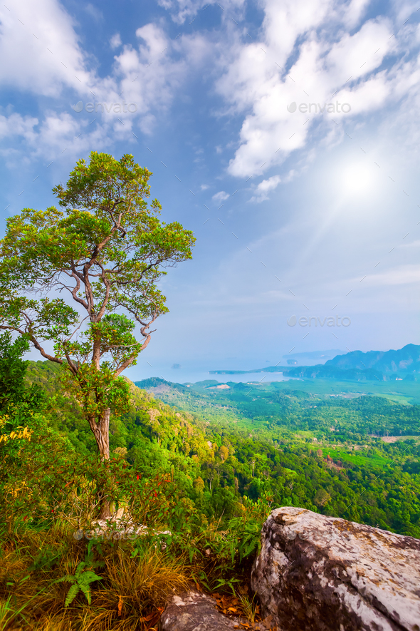 mountains and sunshine in Thailand - Stock Photo - Images