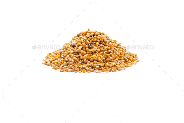 Indian spice - Stock Photo - Images