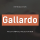 Gallardo - Multipurpose Google Slide Template