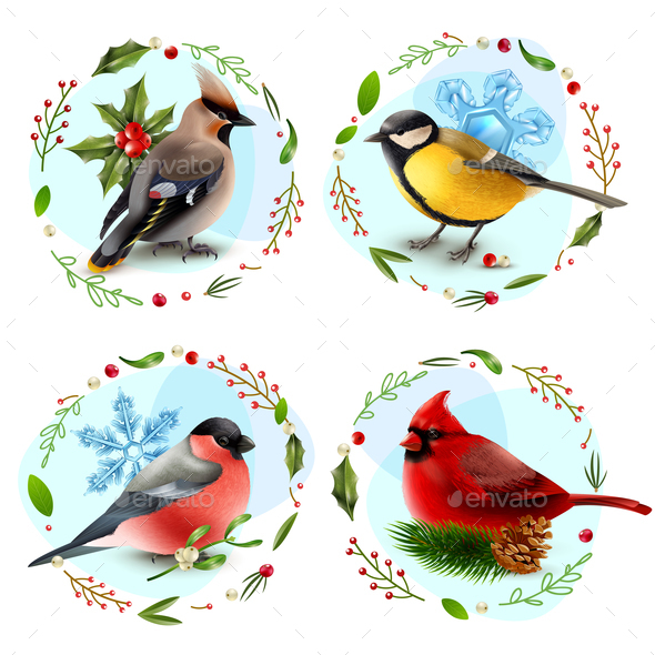 GraphicRiver Winter Birds Design Concept 21123996