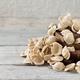 Fresh italian pasta orecchiette - PhotoDune Item for Sale