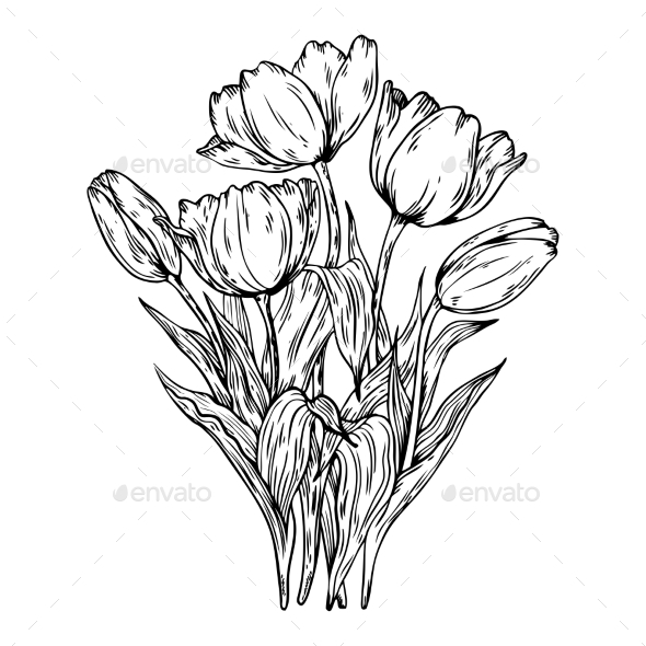 GraphicRiver Bouquet of Tulips Vector Illustration 21125399