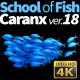 School of Fish Caranx-18 - VideoHive Item for Sale