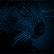 Beaver Moving Around In The Water At Night - VideoHive Item for Sale