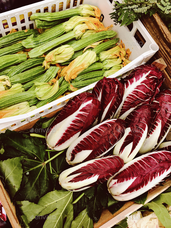 zucchini and radicchio - Stock Photo - Images