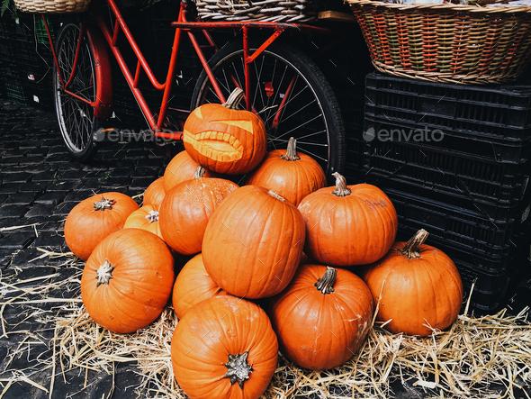 orange pumpkin for Halloween - Stock Photo - Images