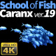 School of Fish Caranx-19 - VideoHive Item for Sale