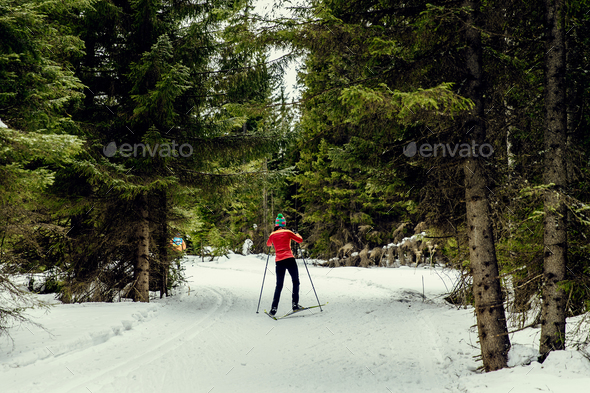 back young girl skier - Stock Photo - Images
