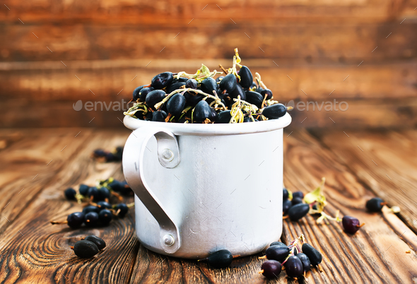 black currant - Stock Photo - Images
