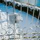 Winter time in garden - PhotoDune Item for Sale
