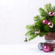 Christmas centerpiece with pink and silver baubles, copy space - PhotoDune Item for Sale