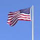 USA Flag and Park Trees - VideoHive Item for Sale