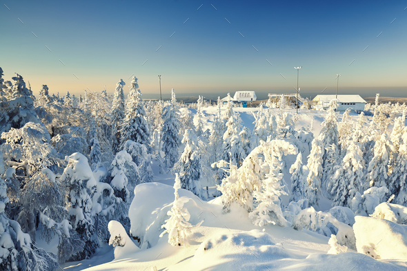 Fairy winter landscape with snow covered trees - Stock Photo - Images