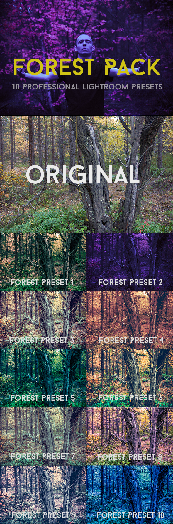 GraphicRiver Forest Pack 10 Professional Lightroom Presets 21133049