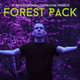 Forest Pack 10 Professional Lightroom Presets