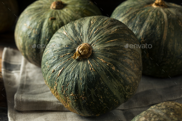 Raw Green Organic Kabocha Squash - Stock Photo - Images