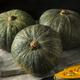 Raw Green Organic Kabocha Squash - PhotoDune Item for Sale