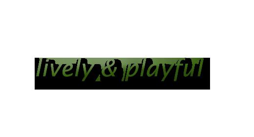 Playful short music files