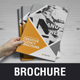 Creative Agency Portfolio Brochure - GraphicRiver Item for Sale