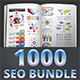 Seo Business Bundle Infographic Elements
