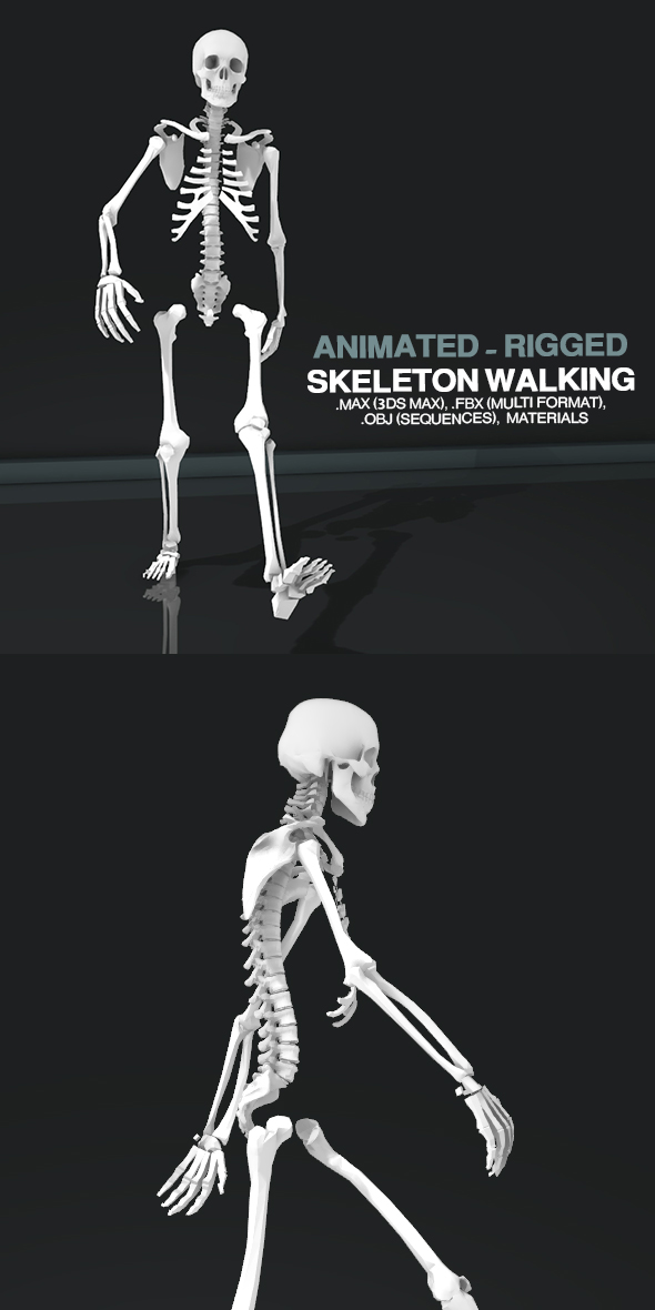 3DOcean Skeleton Walking 21138514
